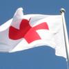 Croce Rossa Italiana, Bandiera