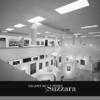 Suzzara, Galleria del Premio
